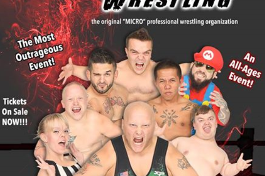 ALL-Ages Micro Wrestling